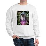 merlin the magician art illustration Sweatshirt