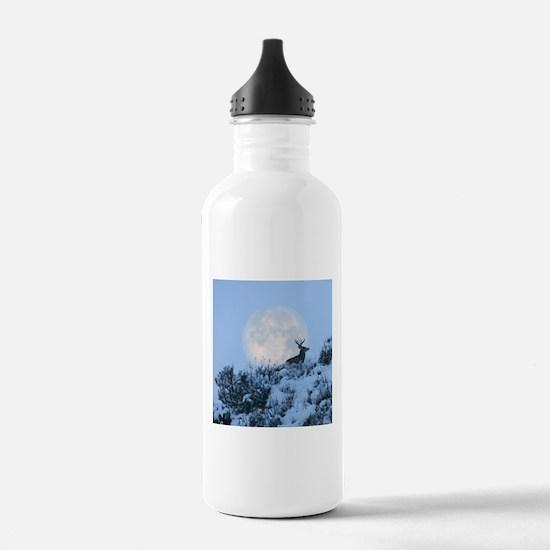Buck deer moon Water Bottle