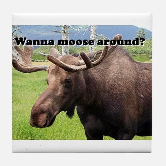Wanna moose around? Alaskan moose Tile Coaster
