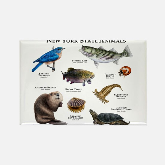 New York State Animals Rectangle Magnet