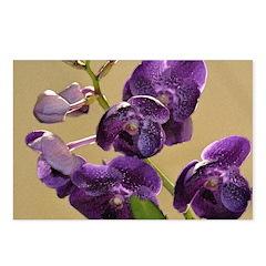 Vanda Orchid Watercolor Postcards (Pkg of 8)