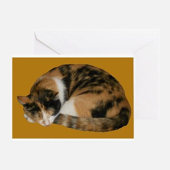 Callico Napping Greeting Card