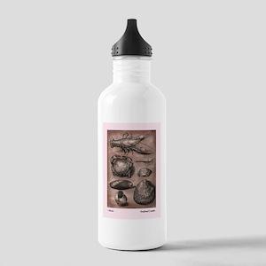 Rustic Seafood Menu Motif. Stainless Water Bottle