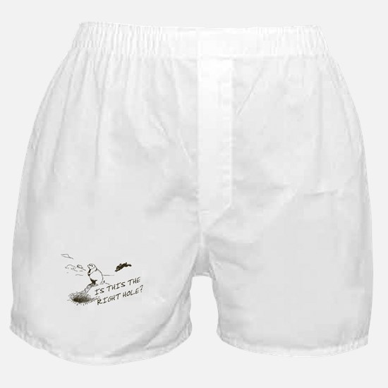 The Right Hole? Groundhogs Day Boxer Shorts
