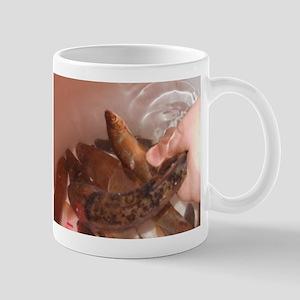 Wild Bait Mug