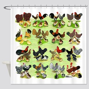16 Chicken Families Shower Curtain