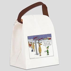 Sleigh Security Canvas Lunch Bag