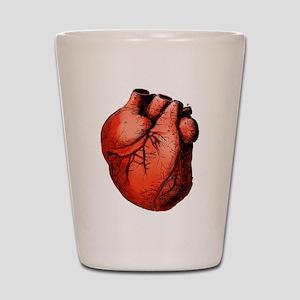 Human Heart Shot Glass