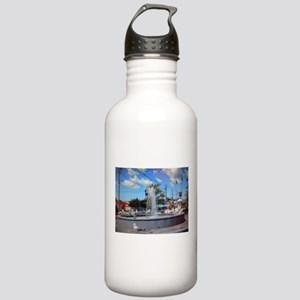 Water Fountain Seagulls Stainless Water Bottle 1.0
