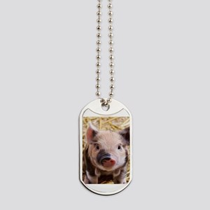 sweet piglet Dog Tags