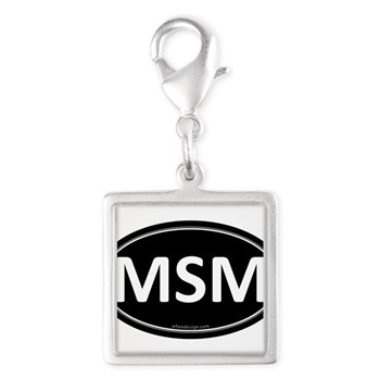 MSM Black Euro Oval Silver Square Charm
