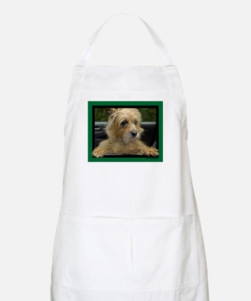Wanna go for a ride? BBQ Apron
