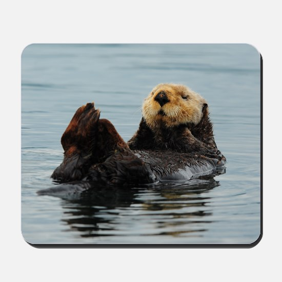 Alaskan Sea Otters Mousepad