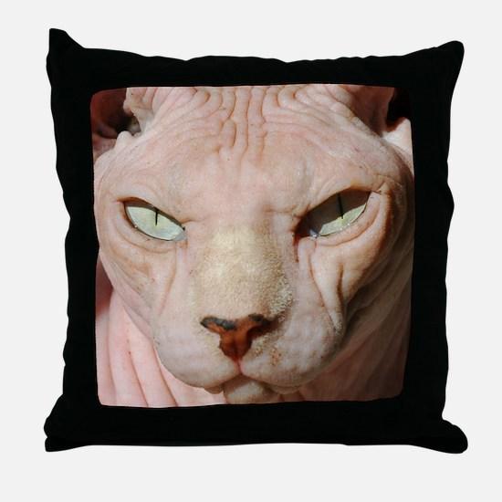 sphynx_eyes.jpg Throw Pillow