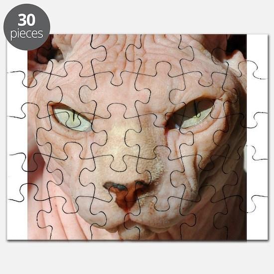 sphynx_eyes.jpg Puzzle
