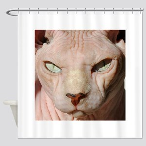sphynx_eyes Shower Curtain