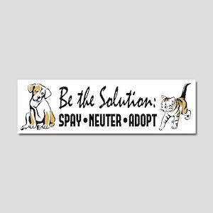 Spay Neuter Adopt Car Magnet 10 x 3