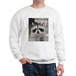 Peanut Raccoon Sweatshirt