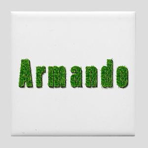 Armando Grass Tile Coaster
