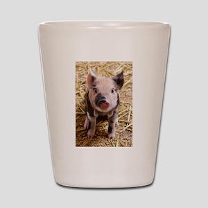 Piglet Shot Glass