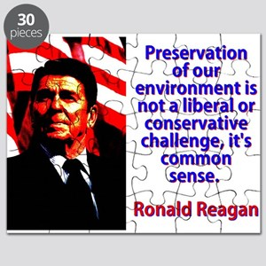 Preservation Of Our Environment - Ronald Reagan Pu