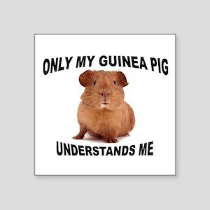 """guinea pig Square Sticker 3"""" x 3"""""""