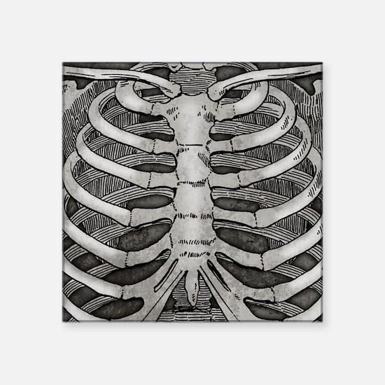 "Rib Bones Square Sticker 3"" x 3"""