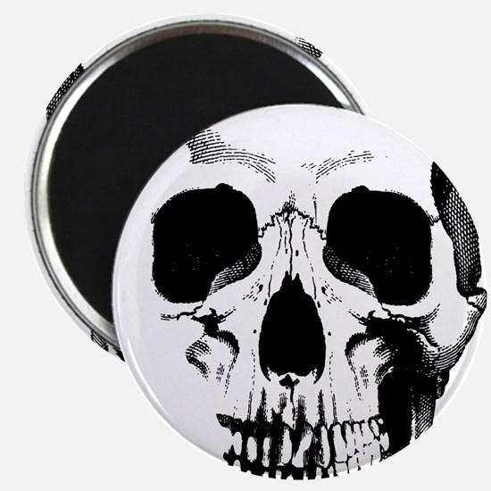 Skull Face Magnet