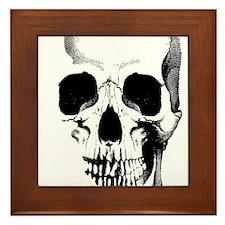 Skull Face Framed Tile