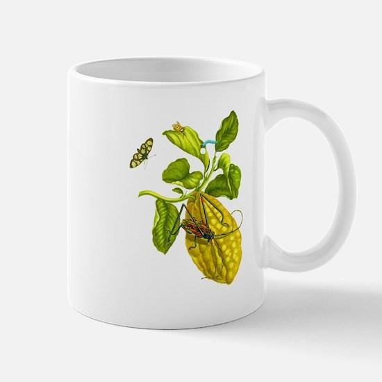 Maria Sibylla Merian Botanical Mug