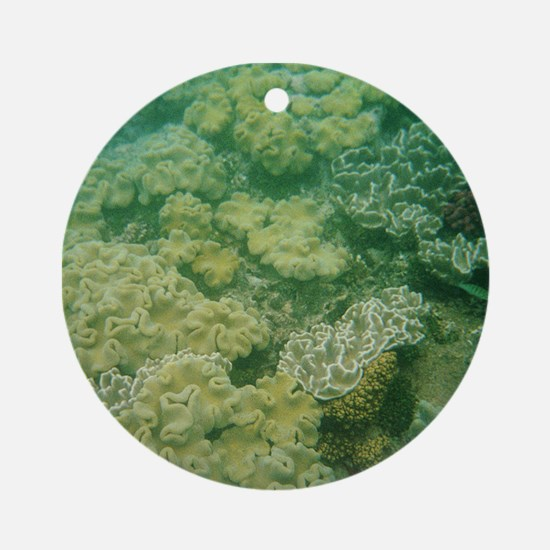 Great Barrier Reef Ornament (Round)