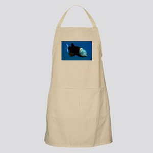 Pacific Barrel-Eye Fish Apron