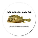 Stiff Fish Round Car Magnet