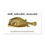 Stiff Fish Rectangle Car Magnet