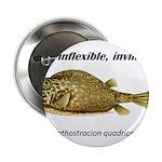 Stiff Fish 2.25