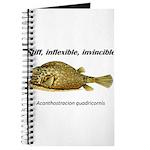 Stiff Fish Journal