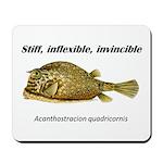 Stiff Fish Mousepad