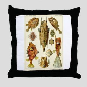Acanthostracion quadricornis Throw Pillow