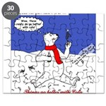North or South Pole? Puzzle