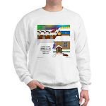 Best Christmas Decorations Sweatshirt