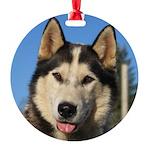 jericoornament Round Ornament