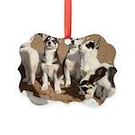 puppiesbone Picture Ornament