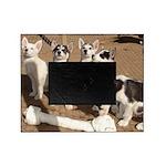 puppiesbone Picture Frame
