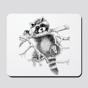 Raccoon Play Mousepad