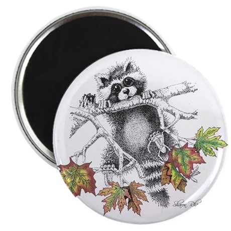 Raccoon Play Magnet