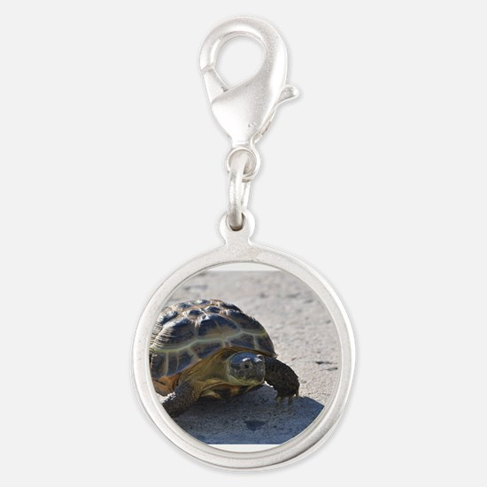 Shelly the tortoise Silver Round Charm