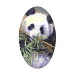 Panda 35x21 Oval Wall Decal