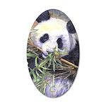 Panda 35x21 Oval Wall Decal