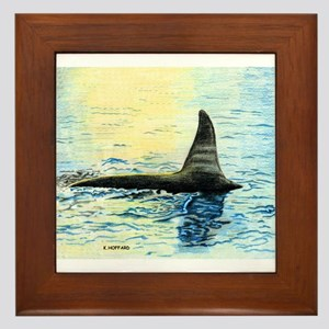 Killer whale Framed Tile