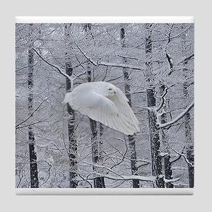Snowy Owl, Praying Wings Tile Coaster